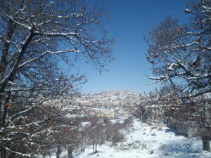 Segni.... di neve